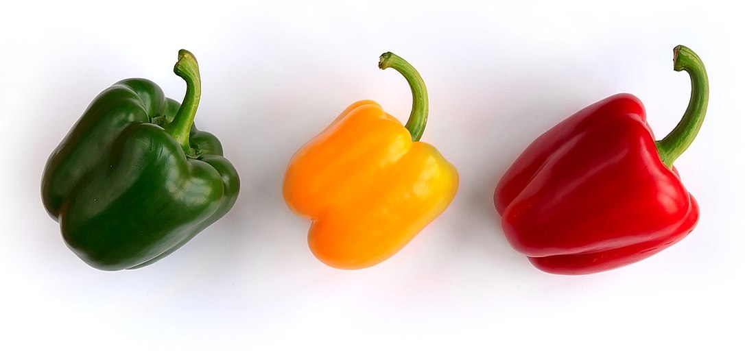 Three bell peppers, one green, one yellow, one red